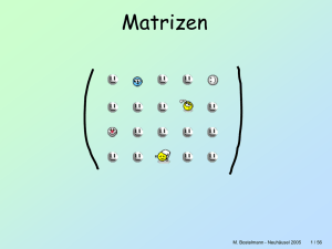 Matrizen - Mathematik