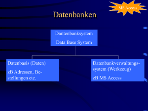 MS ACCESS Datenbanken