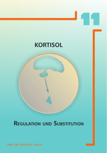 Kortisol - Regulation und Substitution