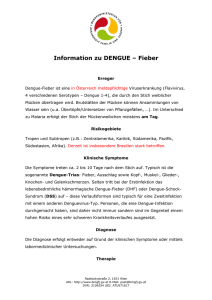 Information zu DENGUE – Fieber