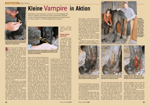 Kleine Vampire in Aktion