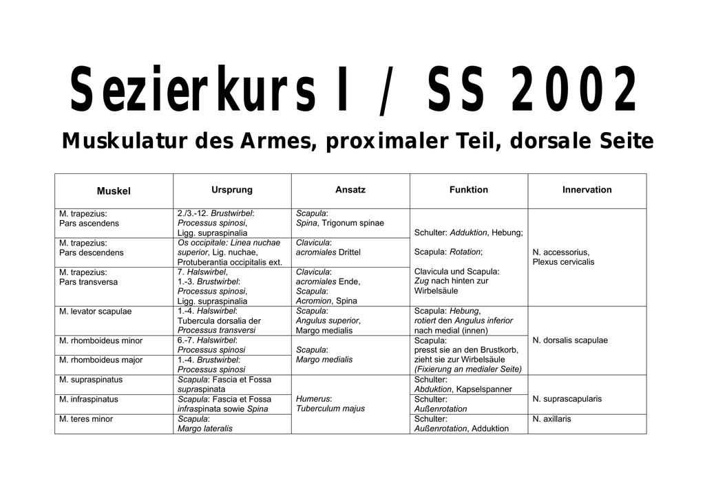 Fein 7. Halswirbel Bilder - Menschliche Anatomie Bilder ...