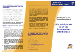 Flyer Salmonellen-Infektionen - im Landkreis Altenburger Land