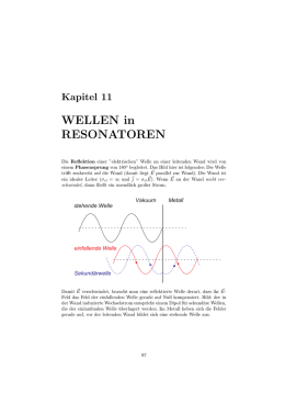 WELLEN in RESONATOREN - Fakult at f ur Physik