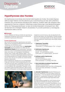Diagnostic Update: Hypothyreose des Hundes