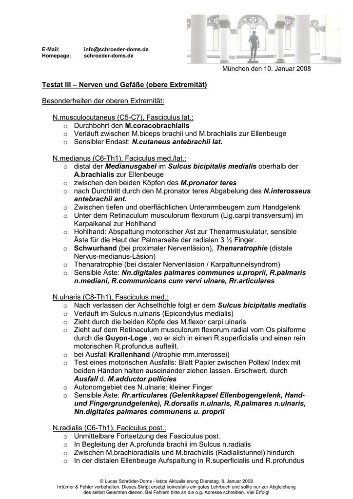 Testat III – Nerven und Gefäße (obere Extremität) Besonderheiten