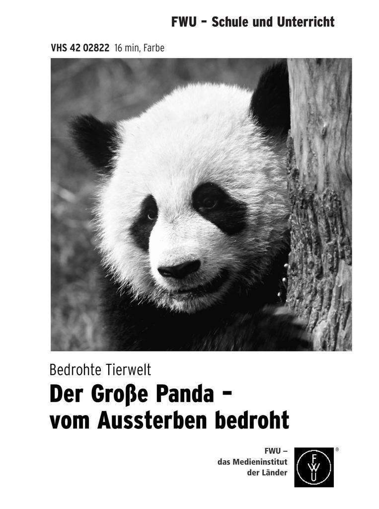 Sind Pandas Vom Aussterben Bedroht