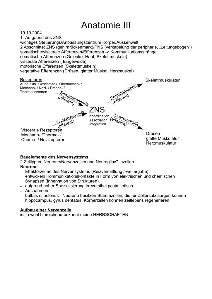 Hirnvorlesung WS 2004 (bis ende november)