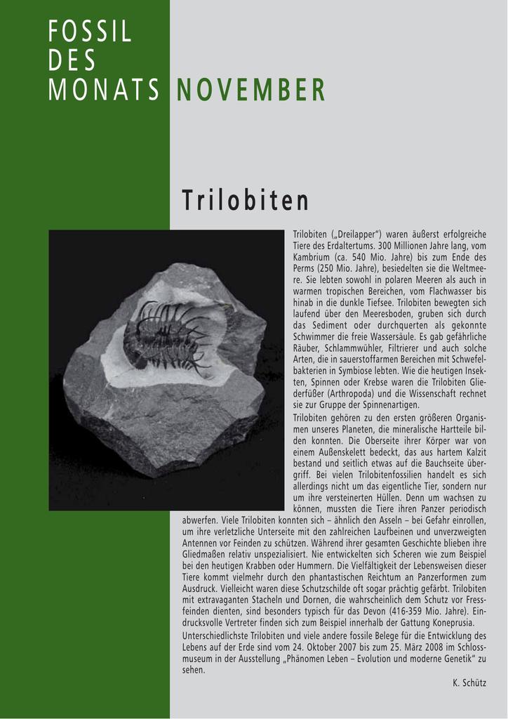 Fossilien-Datierung Arbeitsblatt
