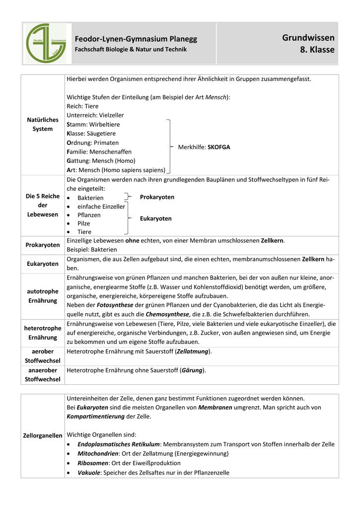 Grundwissen 8. Klasse - Feodor-Lynen