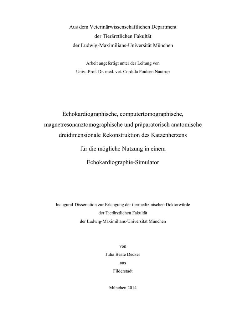 img - Elektronische Dissertationen der LMU München