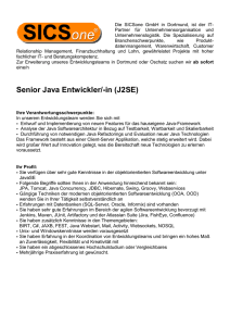Senior Java Entwickler/-in (J2SE)