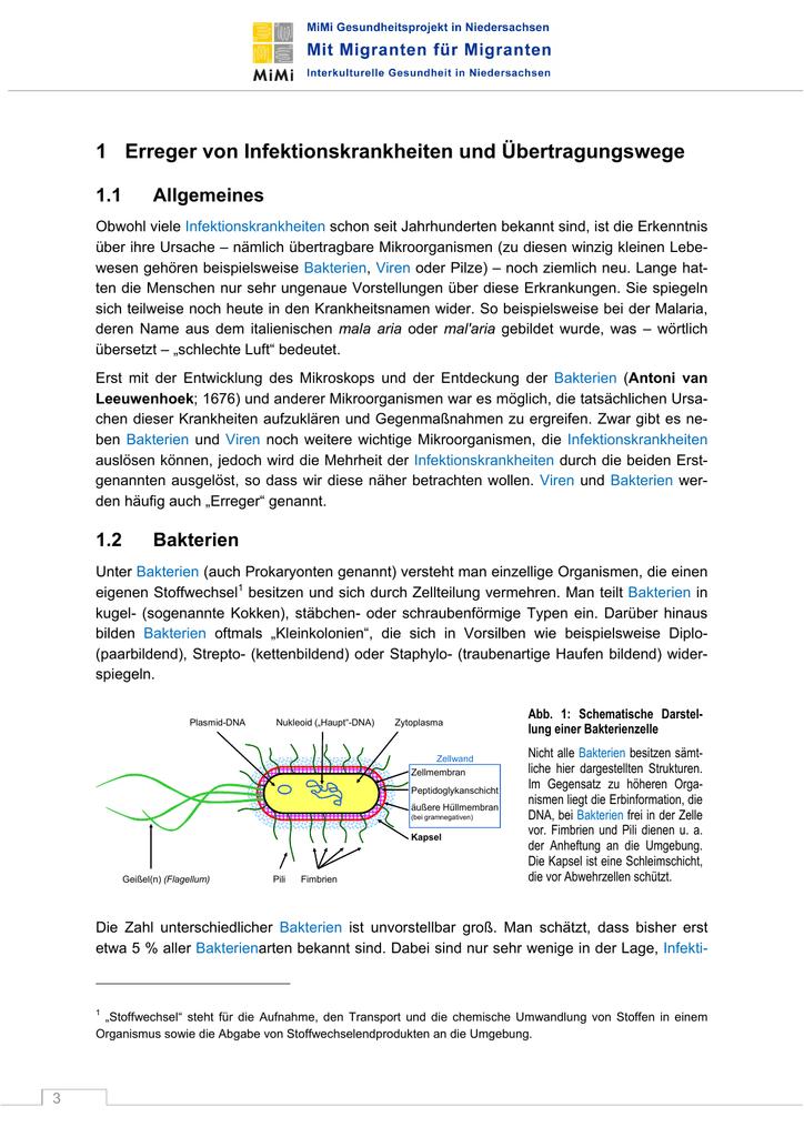 1 Erreger von Infektionskrankheiten und Übertragungswege