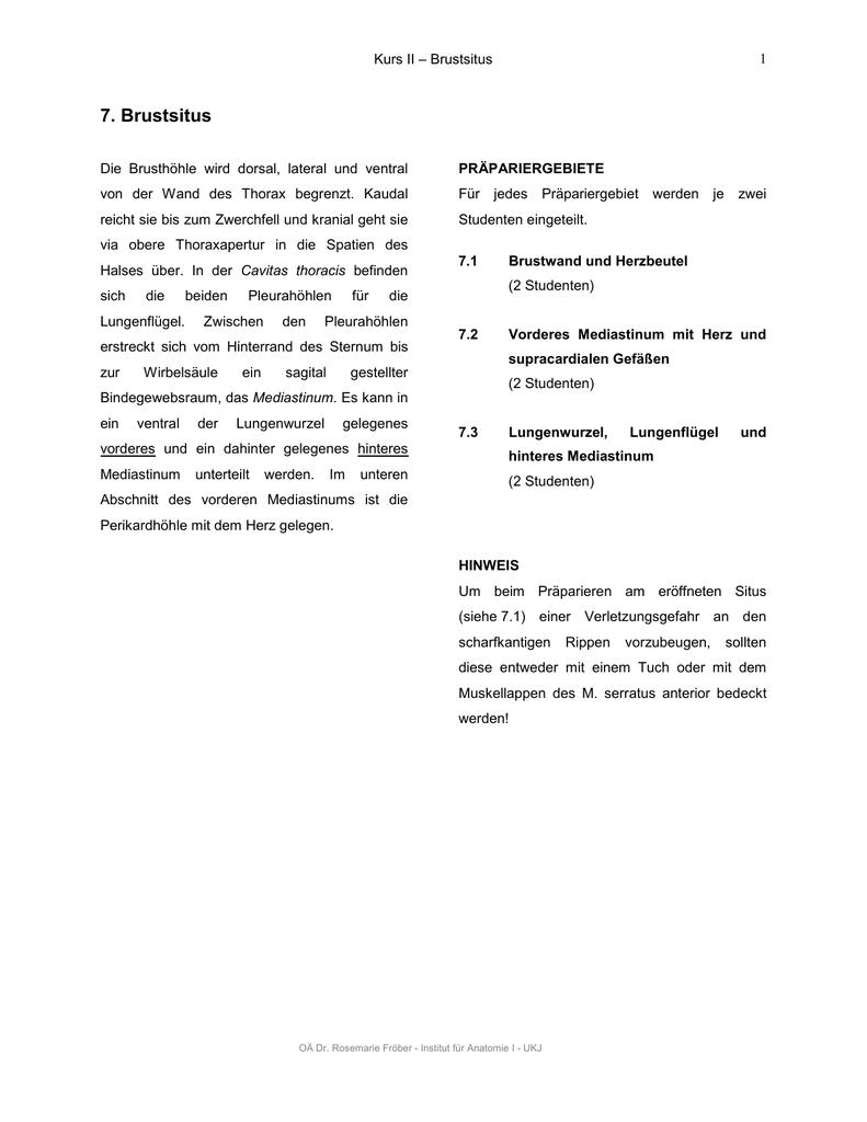 7. Brustsitus - Institut für Anatomie I