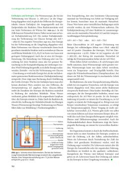 Enthalpie und Entropie - Unterrichtsmaterialien Chemie