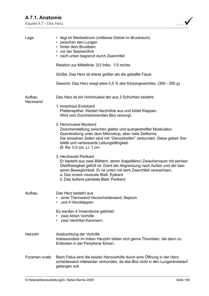 A 7.1. Anatomie - Heilpraktikerausbildung24