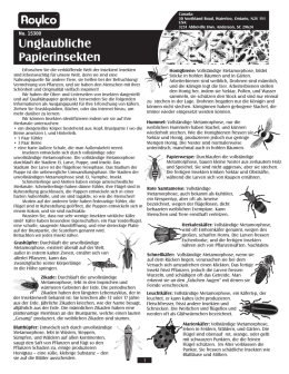 15300 Incredible Insect Paper German Guide