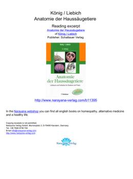 distales radioulnargelenk drug
