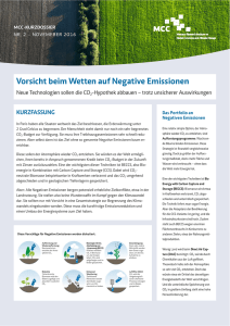 Negative Emissionen - Mercator Research Institute on Global