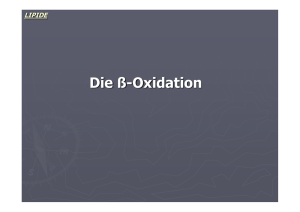 Die ß-Oxidation - Biochemie Trainingscamp