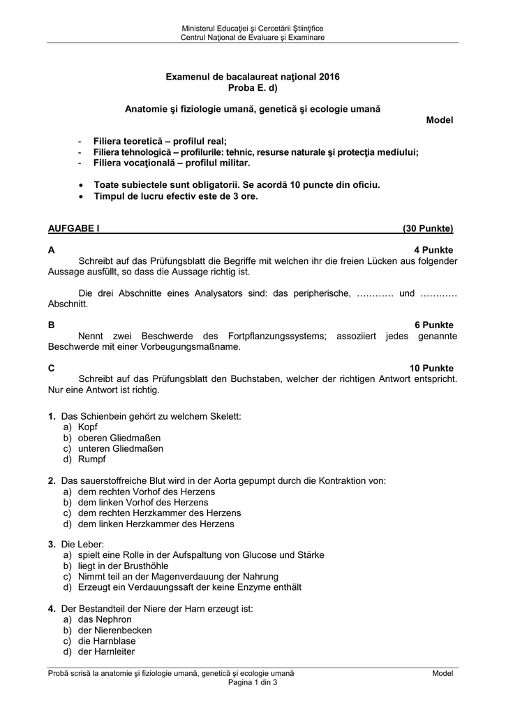 Ziemlich Anatomie Des Herzens Bewertung Blatt 30 Galerie - Anatomie ...