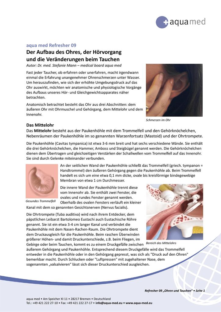 Ausgezeichnet Mastoidknochen Ohr Bilder - Anatomie Ideen - finotti.info