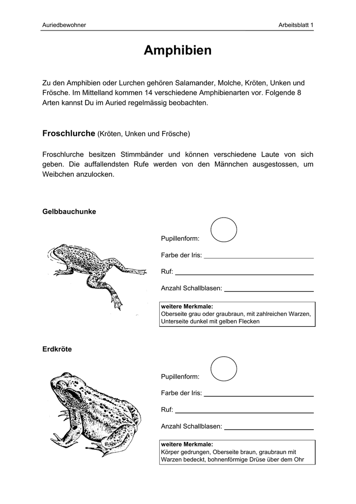 Arbeitsblätter - Pro Natura Fribourg