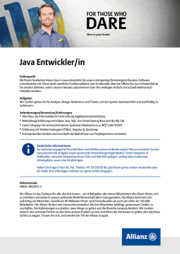 Java Entwickler/in