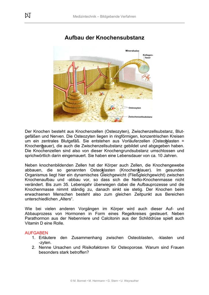 Arbeitsblatt im PDF
