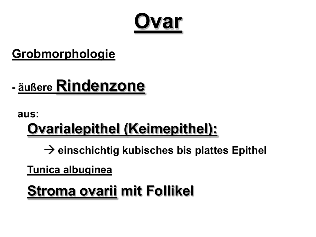 2 reife Follikel kollabiert