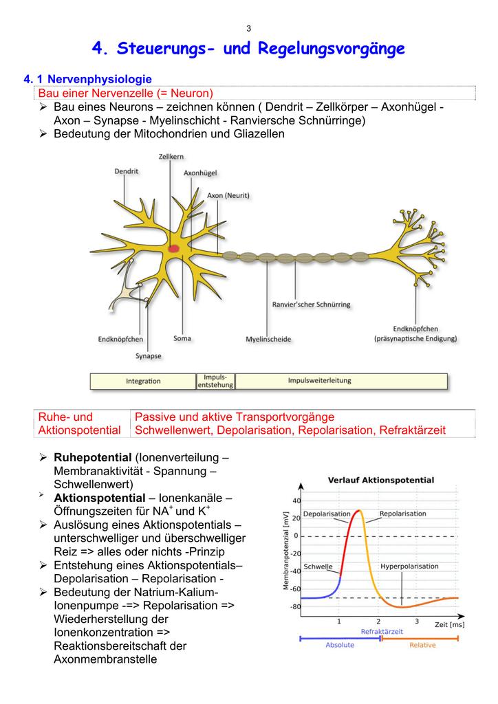 Frequenzmodulation Bio