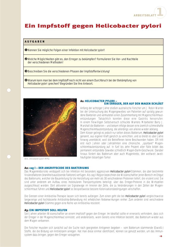 Therapie bei helicobacter pylori