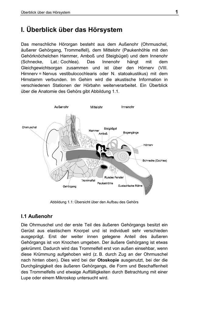 I. Überblick über das Hörsystem
