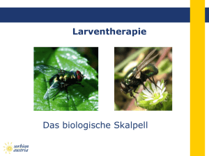 Larventherapie - Sorbion Austria