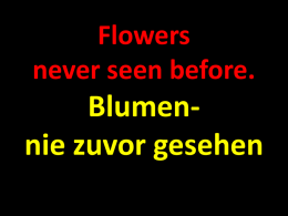 Flowers never seen before. Blumen nie zuvor