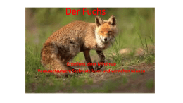 Der Fuchs - WordPress.com