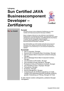 sun-cert-java-businesscomponent-developer