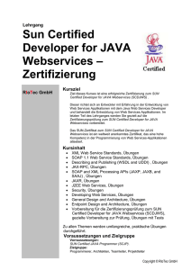 SUN Certified JAVA Web Services Developer