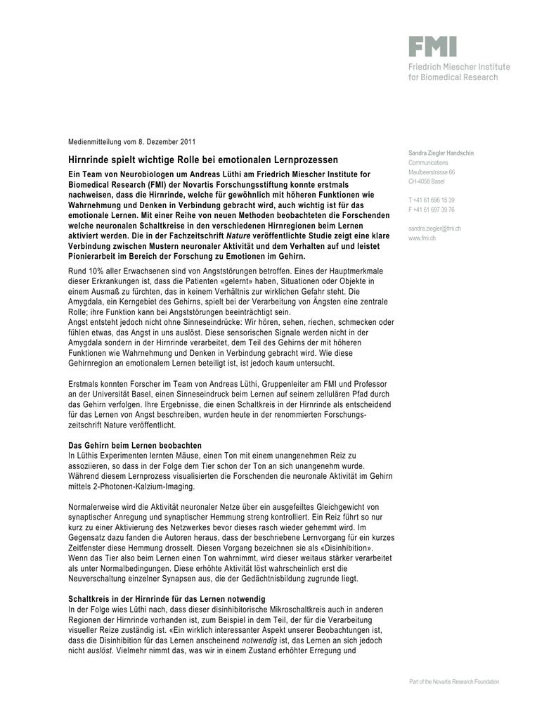 Nett Anatomie Der Verfassung Arbeitsblatt Ideen - Anatomie Von ...