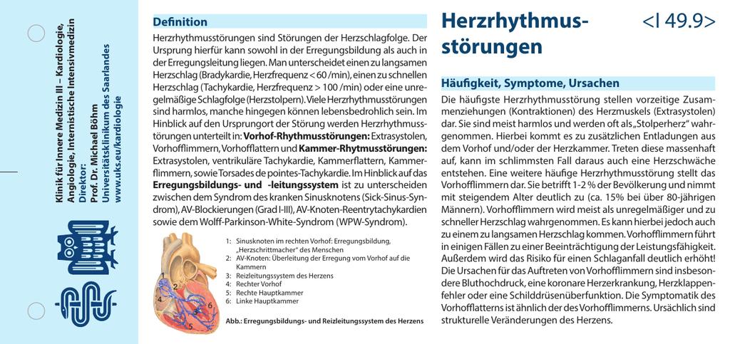 Fein Rechten Vorhof Des Herzens Fotos - Menschliche Anatomie Bilder ...