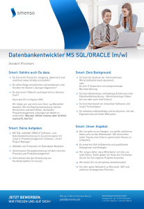 Datenbankentwickler MS SQL/ORACLE (m/w)