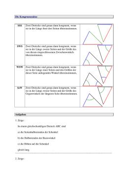 Übungsaufgaben zur Konstruktion rechtwinkliger Dreiecke