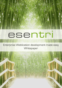 esentri Whitepaper Weblication Development