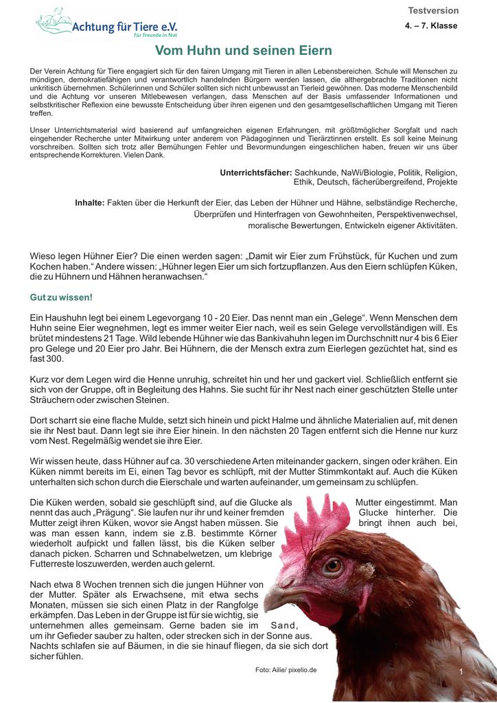 Vom Huhn Und Seinen Eiern