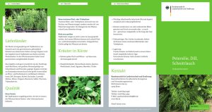 Flyer Produktinformation Petersilie-Dill-Schnittlauch-2015