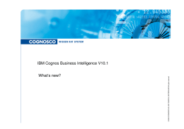 IBM Cognos Business Intelligence V10.1 IBM Cognos
