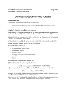 Datenbankprogrammierung (Oracle)