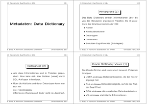 Metadaten: Data Dictionary