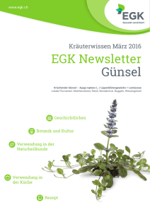 EGK Newsletter Günsel