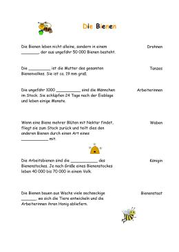wtw_forschungsauftrag_bienennester_lösung
